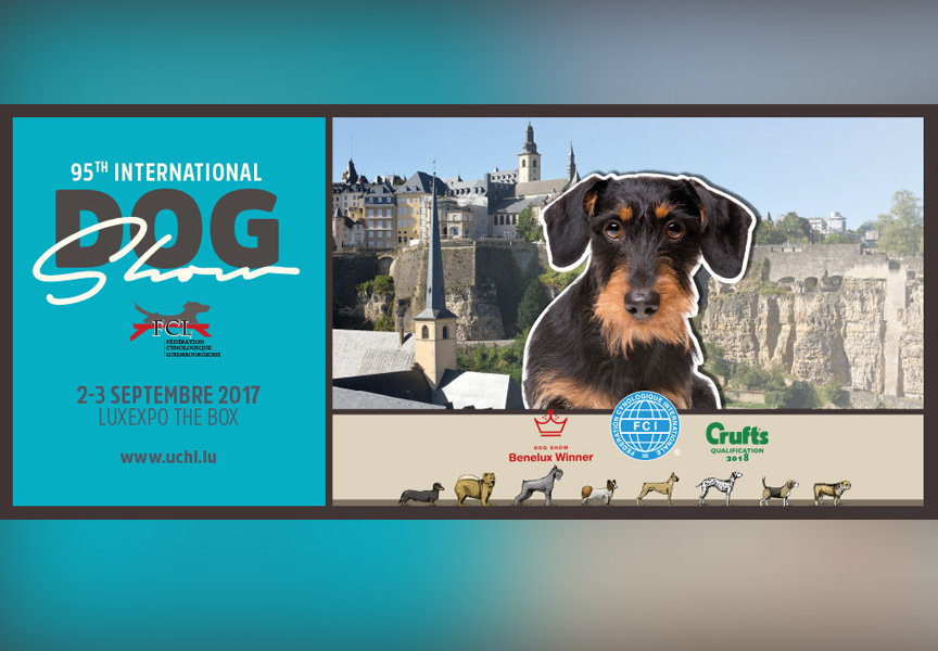 hotel luxembourg dog show